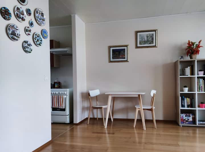 Double room in the City Center.  Free Parking!