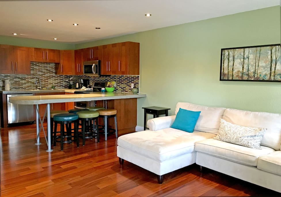 Open plan living room and kitchen.