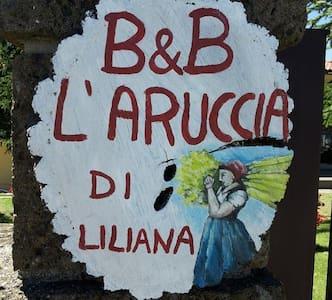 """B&B """"L'aruccia di Liliana"""" - Colle Zingaro"""