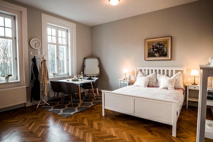 Vila Na Landeku- Cozy spacious room