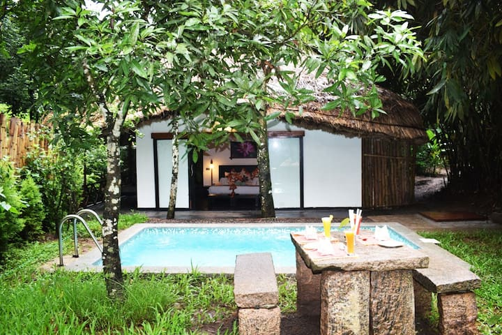 Villa with Private Temp controlled Pool - Thekkady