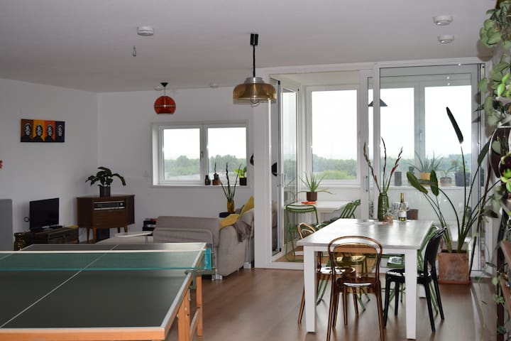 Spacious apartment, amazing view - Amsterdam - Byt