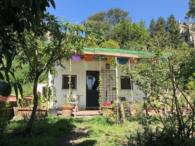 Airbnb Casalnuovo Di Napoli Vacation Rentals Places