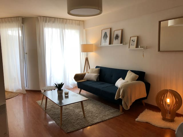 Appartement Cosy Lespinasse-Toulouse 31150