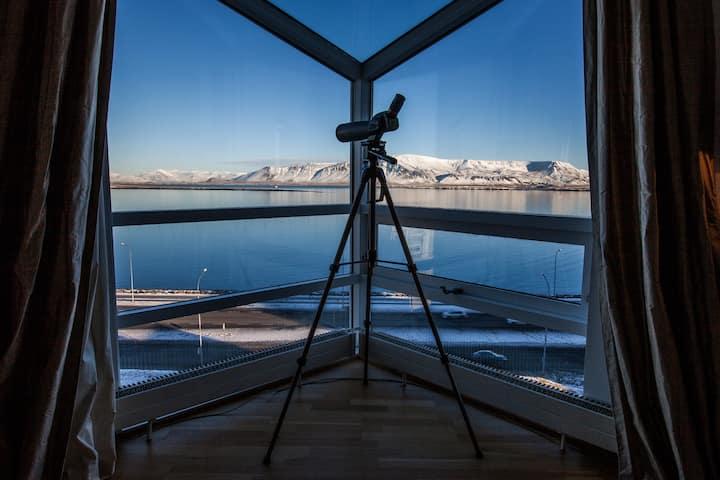 Luxury 8th floor ocean view central