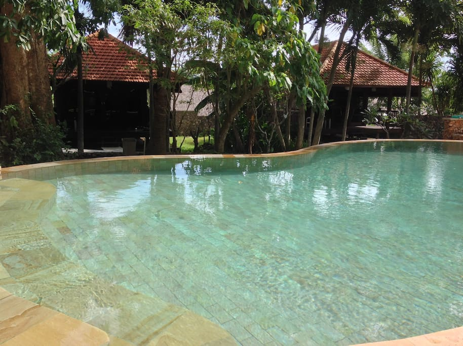Pool with the bungalow in the back