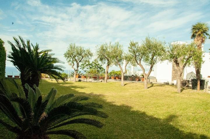 Villa MoMa Vacanze Ischia