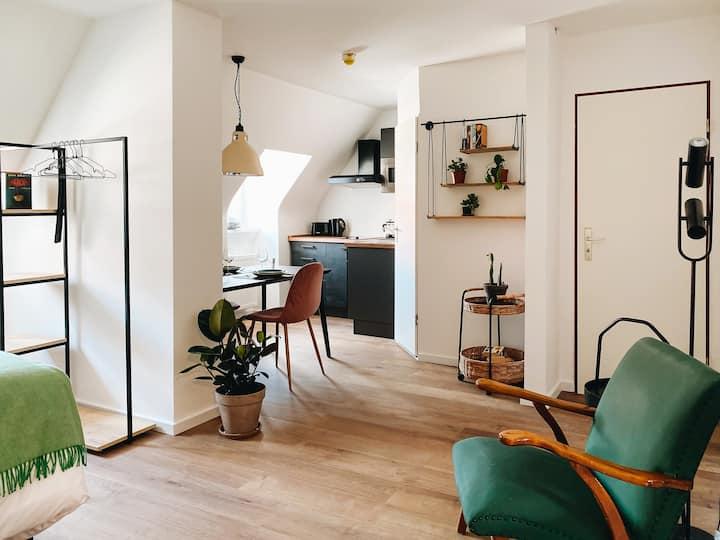LORENZ 52: Studio-Apt mit Küche im Zentrum 28qm