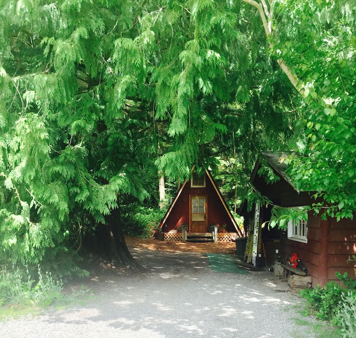 At the end of our driveway, our little A-frame nestles in the woods behind the garage
