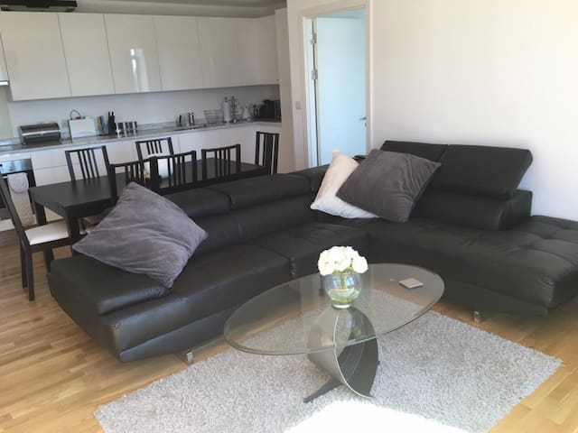 Large 2 Bed Apartment in the Olympic Village