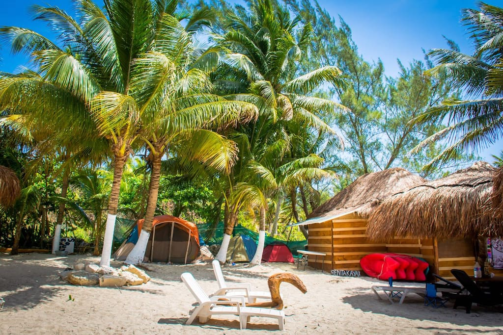 Your tent is located right on the sand under a verdant tropical canopy