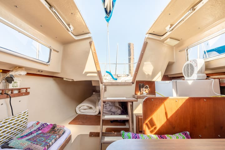 Welcome onboard a beautiful Sailboat!