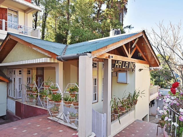 Pleasant 1BR Abode, Shillong (Flash Deal ⚡)