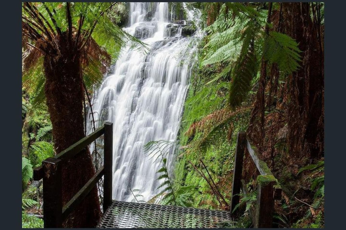 Discover private secluded waterfalls immersed in the ancient rainforest of The Source, Otways