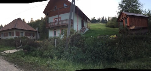 Карпатский домик
