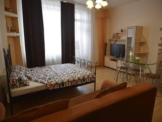 Уютная квартира в самом сердце города - Nowosybirsk - Apartament