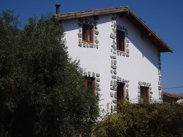 Moradia no Alto Douro Vinhateiro - Viseu - Villa