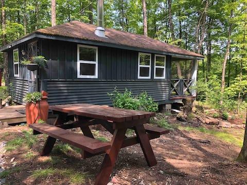 Rustic Cabin Getaway