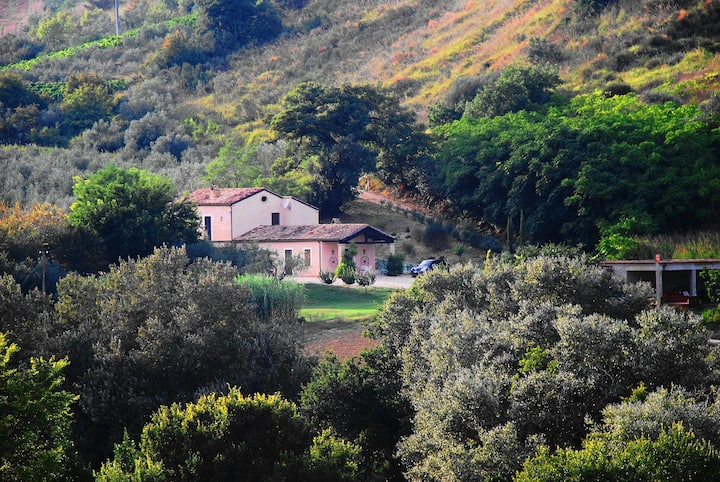 Country House close to the sea.