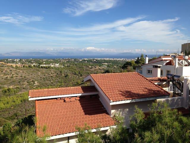 Seaview Vacation Villa - Kallitechnoupoli