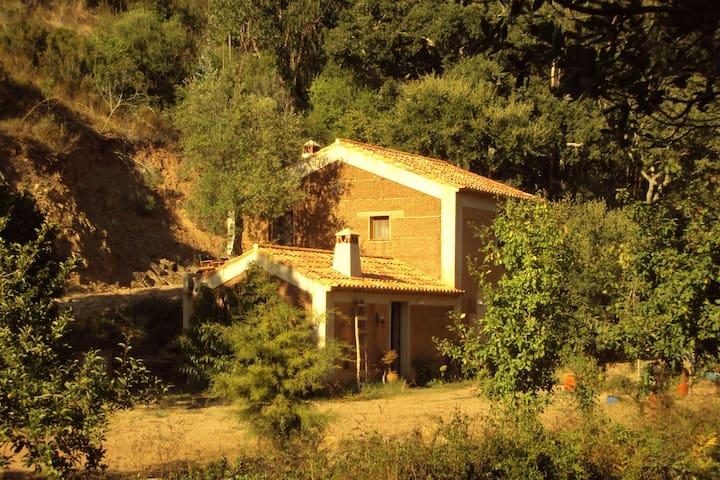 Quiet and cottage in the estate Casas da Cerca, near Troviscais