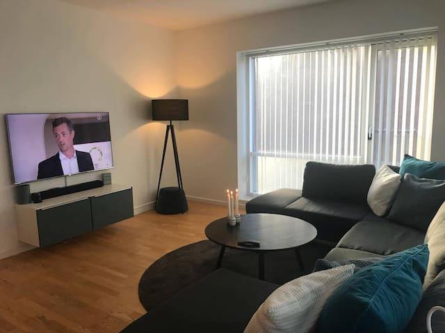 Modern 3 room 99 m2 apartment in inner Copenhagen