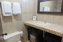 Second bathroom with sink, shower and toilet