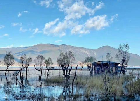 Shangri–La Crane Valley Inn 香格里拉草原上云来鹤谷田园大床房—4