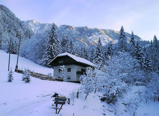 Apartment with 2 bedrooms near Logarska Valley