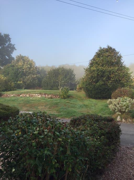 Garden view.