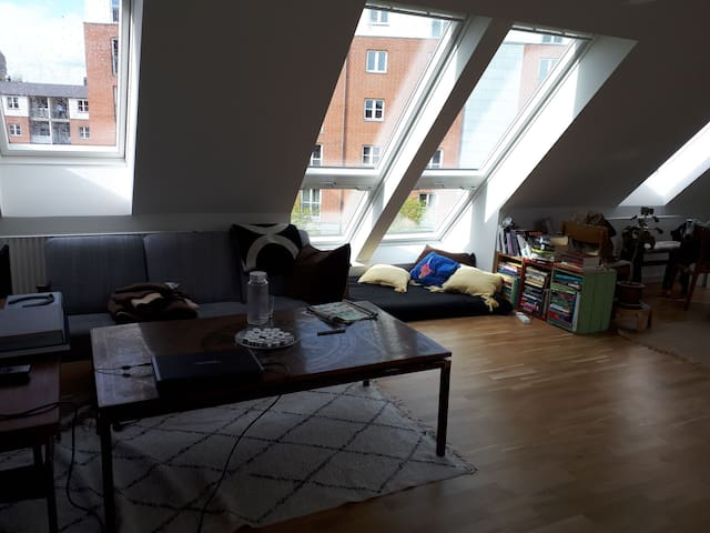 Lovely penthouse apartment in the heart of Odense