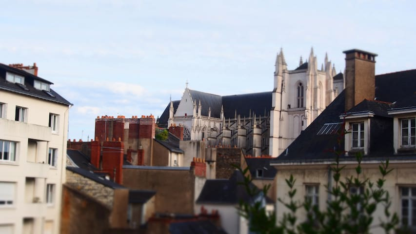 Vue cathédrale
