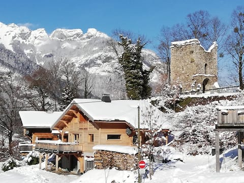 New cosy appartement in Le Biot, Multipass