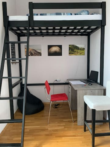 This is a single bunk-loft bed, 200 x 90