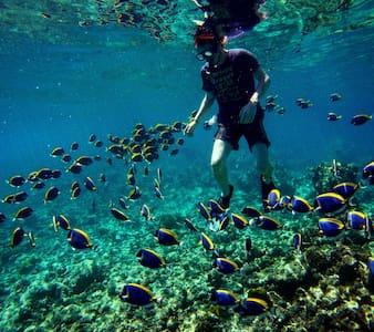 Coral Heaven Maldives, K. Guraidhoo