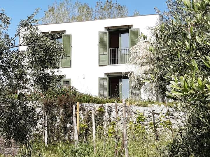 villa nella Conca d'Oro con oliveto e giardino