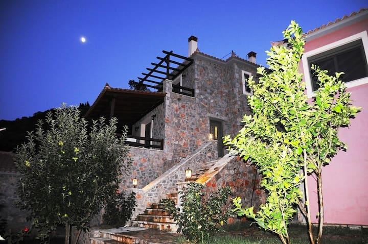 """""""PARNONAS"""" Villa with garden - """"Dio Guesthouses"""""""