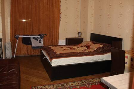Квартира-студия - Pushkin