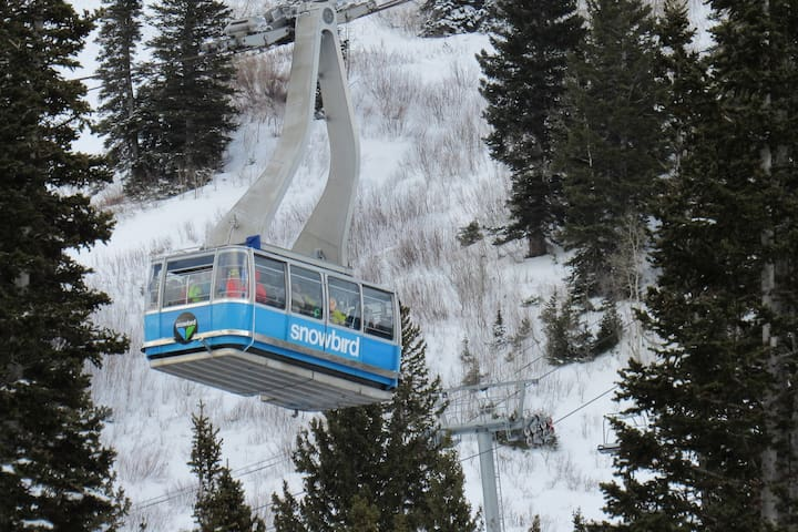 Snow getaway for the holidays-steps from ski lift!