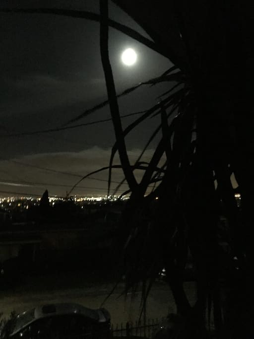 The view from my porch - a great place to have a smoke