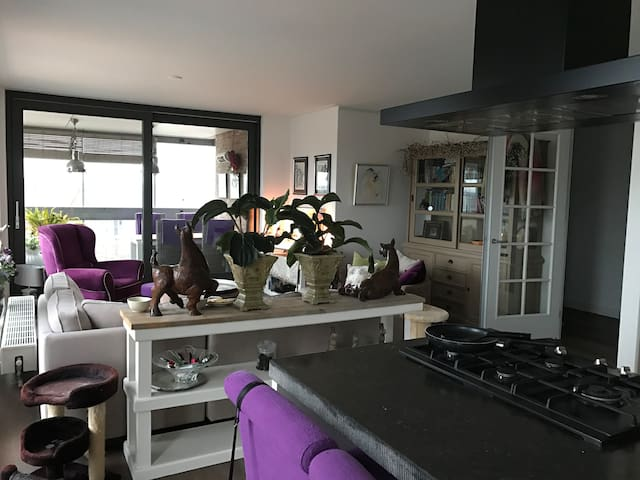 Luxury apartment; Beach and Amsterdam nearby - Heemskerk - Apartament