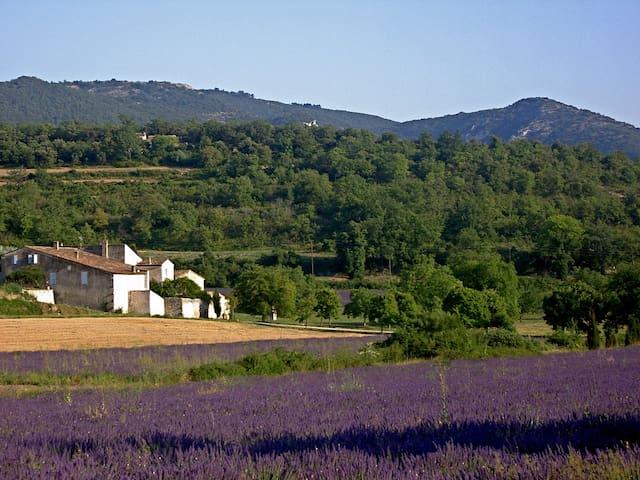 Domaine de La Grande Bastide
