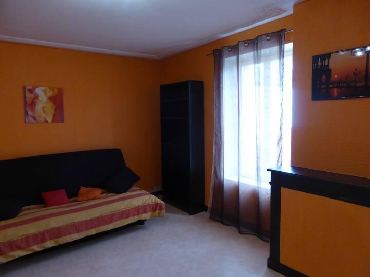 Appartement spacieux 54 m2 - proche Pépinière