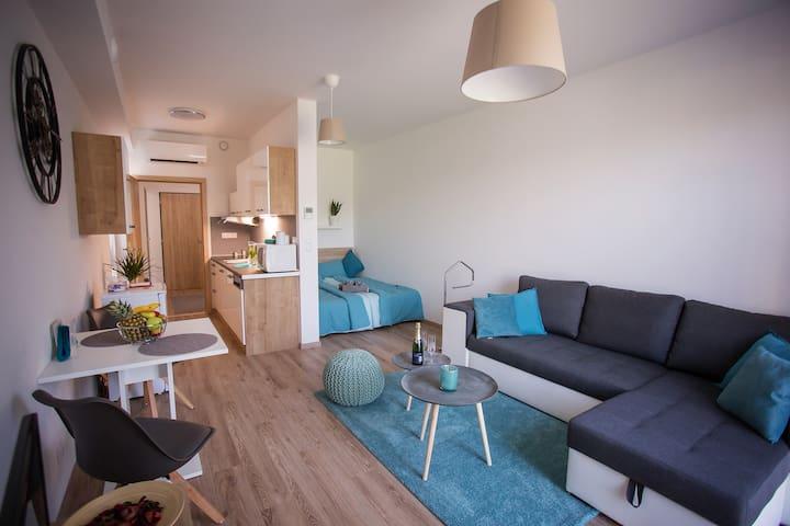 Kompletně zařízený byt 1kk pro náročnější klienty