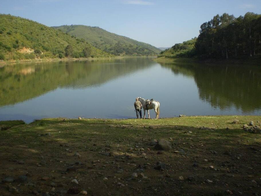 La rivera del Cala se remansa en los Praditos.