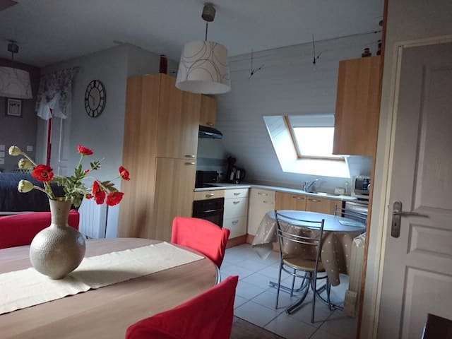 Le Cosy - Lanvallay - Appartement