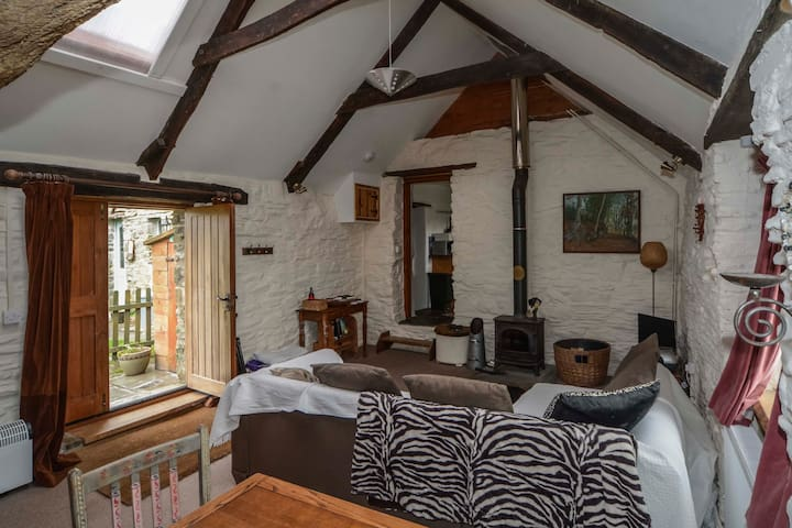 Quirky mill barn conversion with stunning views - Mynachlogddu - Leilighet
