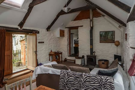 Quirky mill barn conversion with stunning views - Mynachlogddu
