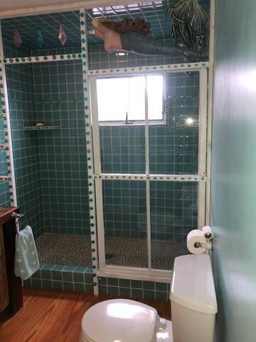 1st floor full bath / mermaid shower