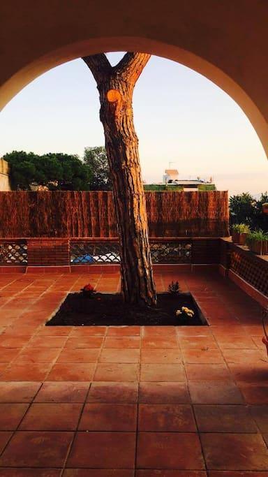 terraza amplia y agradable